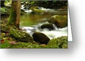 Mountains Photographs Greeting Cards - Mountain Stream 2 Greeting Card by William Jones