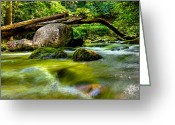 Ocularperceptions Greeting Cards - Mountain Stream Greeting Card by Christopher Holmes
