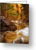 Mountain Summit Greeting Cards - Mountain Stream in Autumn Greeting Card by Utah Images
