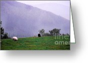 Green Pasture Greeting Cards - Mourn Mountains Approaching Rain Greeting Card by Thomas R Fletcher