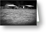 Sheds Greeting Cards - Moving Grass Greeting Card by Dale Stillman