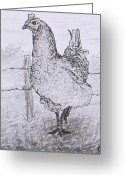 "\\\""barbed Wire Fence\\\\\\\"" Drawings Greeting Cards - Mrs. Hen Greeting Card by Quwatha Valentine"