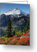 Volcano Greeting Cards - Mt. Baker Autumn Greeting Card by Winston Rockwell