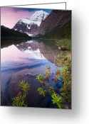 Edith Greeting Cards - Mt Edith Cavell, Jasper National Park, Canada Greeting Card by Mint Images/ Art Wolfe