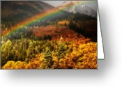 Forested Greeting Cards - Mt. Timpanogos with Autumn Colors and Rainbow Greeting Card by Utah Images
