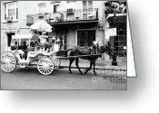 Buggy Greeting Cards - Mule and buggy French Quarter New Orleans Greeting Card by Thomas R Fletcher