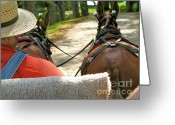 Overalls Greeting Cards - Mule Driver Greeting Card by Lynn-Marie Gildersleeve