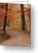 Road Greeting Cards - Munich Foliage Greeting Card by Frenzypic By Chris Hoefer
