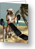 Pet Picture Greeting Cards - Muscle boy bulldog Greeting Card by Gina Femrite