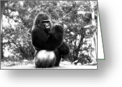 Ape. Great Ape Greeting Cards - Muscles Greeting Card by John Rizzuto