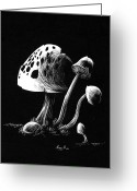 White Reliefs Greeting Cards - Mushroom patch Greeting Card by Morgan Banks