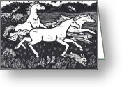 Falcon Drawings Greeting Cards - Mustangs Frisking on the High Plains Greeting Card by Dawn Senior-Trask