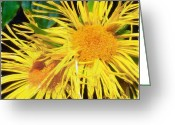 Actual Greeting Cards - Mutant Daisys Greeting Card by Rain Longson