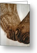Horse Pyrography Greeting Cards - Muzzle Nuzzle Greeting Card by Adam Owen
