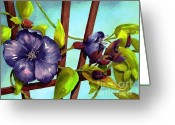  Originals Greeting Cards - My Blue Heaven Greeting Card by Maryann Schigur