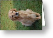 Retriever Prints Photo Greeting Cards - My Loyal Companion Greeting Card by Kristine McNamara