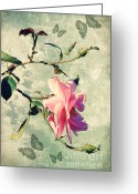 Texture Floral Mixed Media Greeting Cards - My rose Greeting Card by Angela Doelling AD DESIGN Photo and PhotoArt
