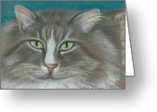 Gray Tabby Greeting Cards - My Stormy Greeting Card by Linda Nielsen