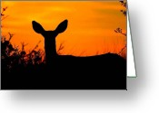 Gloaming Greeting Cards - Mysterious Deer Greeting Card by Dean Leh