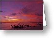 Shoreline Greeting Cards - Mysterious Sunset Greeting Card by Melanie Viola