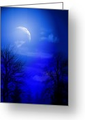 Mood Mixed Media Greeting Cards - Mystic Night Greeting Card by Mark Ashkenazi