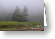 Desert Island Greeting Cards - Mystical Acadia National Park Greeting Card by Juergen Roth