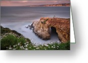 Seagulls Greeting Cards - Mystical Cave Greeting Card by Larry Marshall