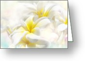 Hawaiian Art Digital Art Greeting Cards - Na Lei Pua Melia Aloha e ko Lele - Yellow Tropical Plumeria Maui Greeting Card by Sharon Mau