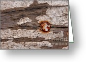Rust Greeting Cards - Nailed Greeting Card by Dan Holm