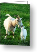Kid Photo Greeting Cards - Nanny and Kid Greeting Card by Thomas R Fletcher