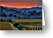 Fall Photographs Greeting Cards - napa Valley Sunset 20 Greeting Card by Mars Lasar