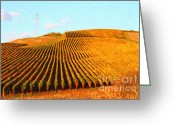 Vineyard Digital Art Greeting Cards - Napa Valley Vineyard Greeting Card by Wingsdomain Art and Photography