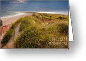 Beautiful Clouds Greeting Cards - Napatree Point Preserve Greeting Card by Susan Cole Kelly