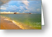 Surf Fishing Photo Greeting Cards - Naples FL Beach Greeting Card by Danuta Bennett