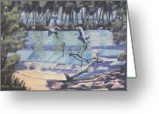 Murray Mcleod Greeting Cards - Narrabeen Lakes 2 Greeting Card by Murray McLeod