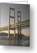 Commencement Bay Greeting Cards - Narrows Bridge Greeting Card by Paulina Roybal