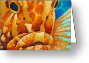 Caribbean Sea Tapestries - Textiles Greeting Cards - Nassau Grouper  Greeting Card by Daniel Jean-Baptiste