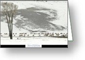 Yellowstone Landscape Art Greeting Cards - National Elk Refuge Greeting Card by Greg Norrell
