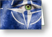 Nato Greeting Cards - Nato Greeting Card by Semmick Photo