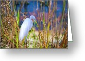 Herons Greeting Cards - Natural Beauty Greeting Card by Adele Moscaritolo