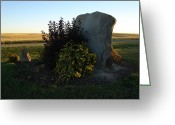 Drumheller Greeting Cards - Natural Beauty Greeting Card by K Walker