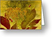 Autumn Colors Greeting Cards - Nature at Work Greeting Card by Bonnie Bruno