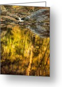 Ethereal Water Greeting Cards - Nature Made Greeting Card by Bill  Wakeley