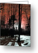 Landscape Posters Digital Art Greeting Cards - Nature Of Wood Greeting Card by Mark Ashkenazi