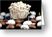 Fungus Greeting Cards - Nature photographers shooting adventure Greeting Card by Mingqi Ge