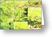 Robert C. Glover Jr Greeting Cards - Nature Scape 001 Greeting Card by Robert Glover