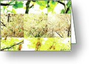 Robert C. Glover Jr Greeting Cards - Nature Scape 003 Greeting Card by Robert Glover