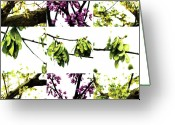 Robert C. Glover Jr Greeting Cards - Nature Scape 004 Greeting Card by Robert Glover