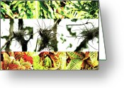 Robert C. Glover Jr Greeting Cards - Nature Scape 007 Greeting Card by Robert Glover