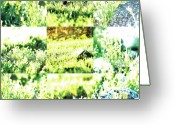 Robert C. Glover Jr Greeting Cards - Nature Scape 009 Greeting Card by Robert Glover